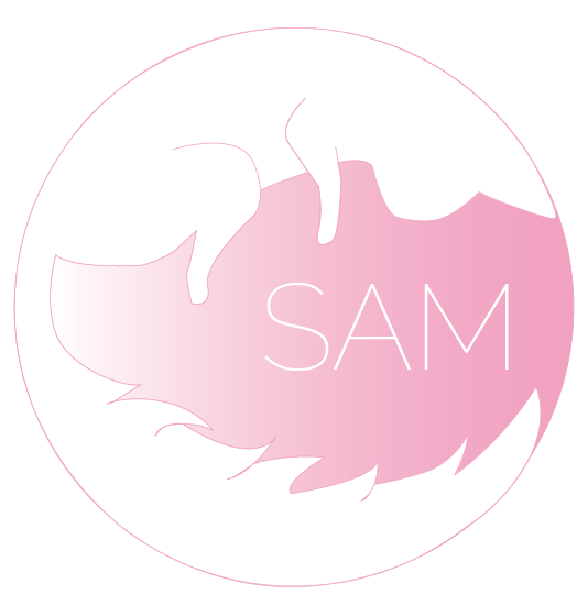 Sam Livrable